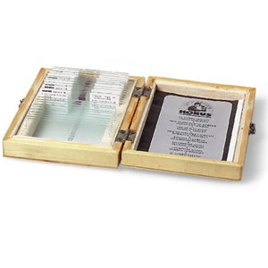Konus Protozoa Microscope Slide Set (includes 10 prepared slides)